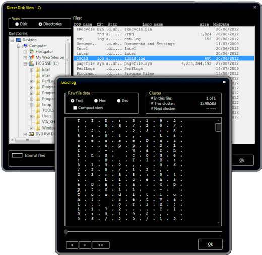 Picture of Clean Disk Security Direct Disk viewer